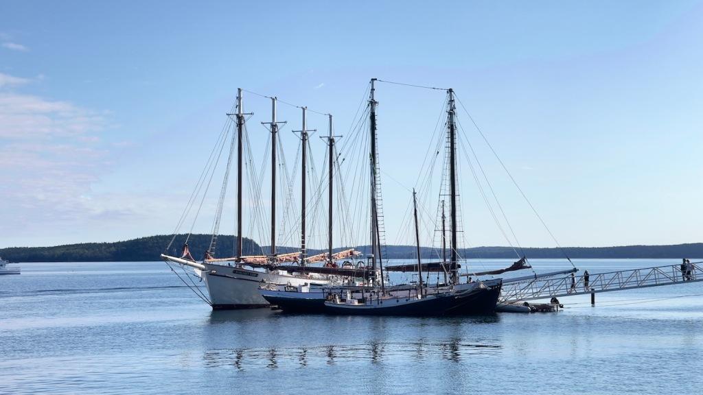 Sailing ships moored in Bar Harbor, ME.