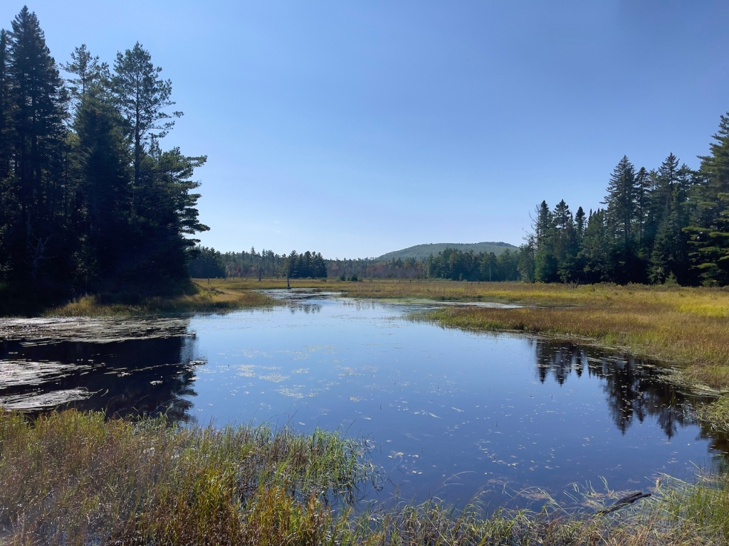 Looking across a wetland to a distant mountain ridge at Katahdin Woods and Waters National Monument in Maine.